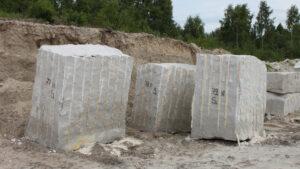 Długosz piaskowiec
